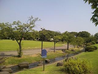 会場の芝生.jpg