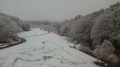 深田公園.jpg